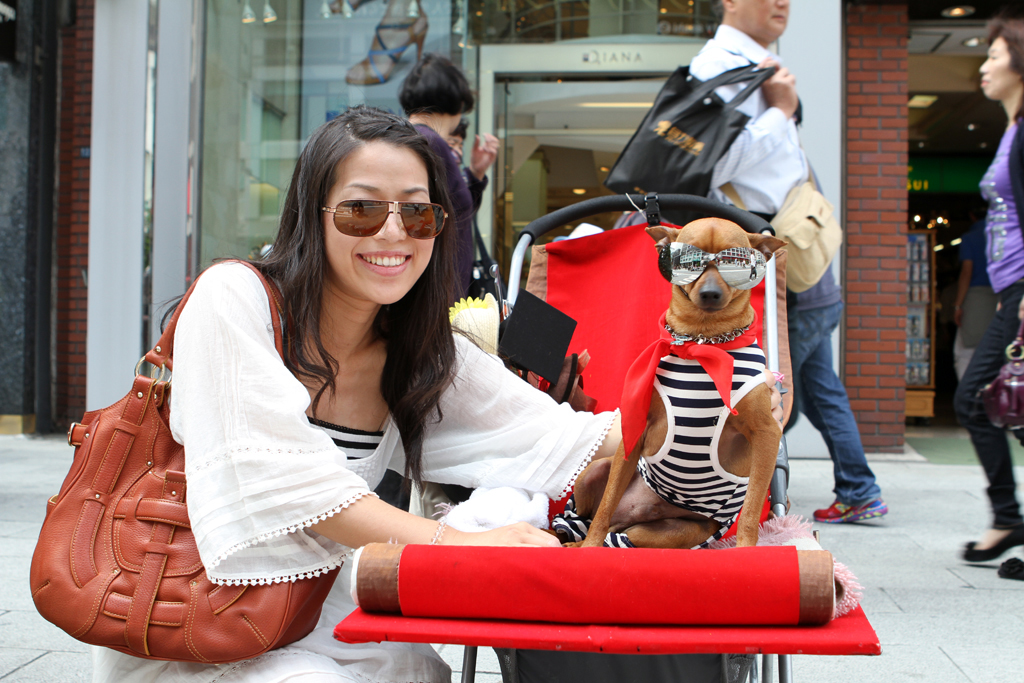 A young Japanese woman and crouches next to her dog who's dressed up in a striped shirt and sunglasses, sitting on a stroller.