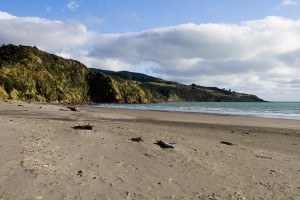 Raglan beach as we arrived - pristine and devoid of people.