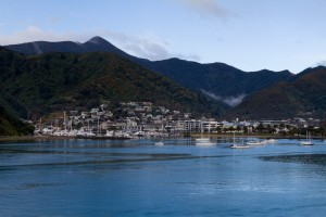 Coming in to Picton, New Zealand, on the ferry.