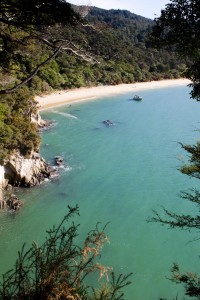 The view of Tonga Bay from the walk in Abel Tasman National Park.