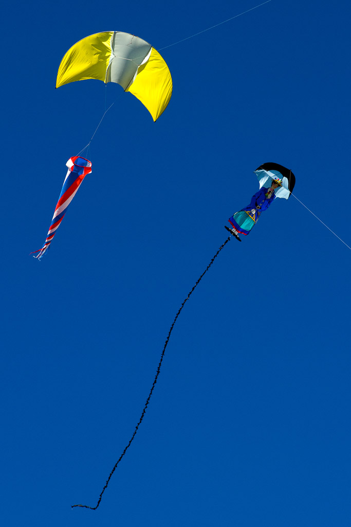 Zilker Park Kite Festival 9350 Photo Essay   Austin Kite Festival at Zilker Park