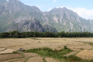 The landscape of Vang Vieng is filled with rice fields, karsts, caves and rivers.