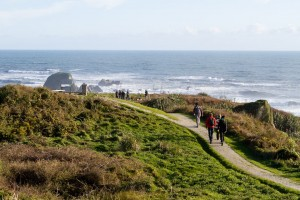 The walk along the top of Cape Foulwind